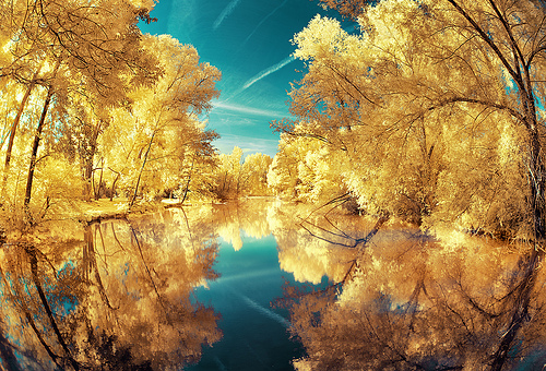 IReflection por David Keochkerian